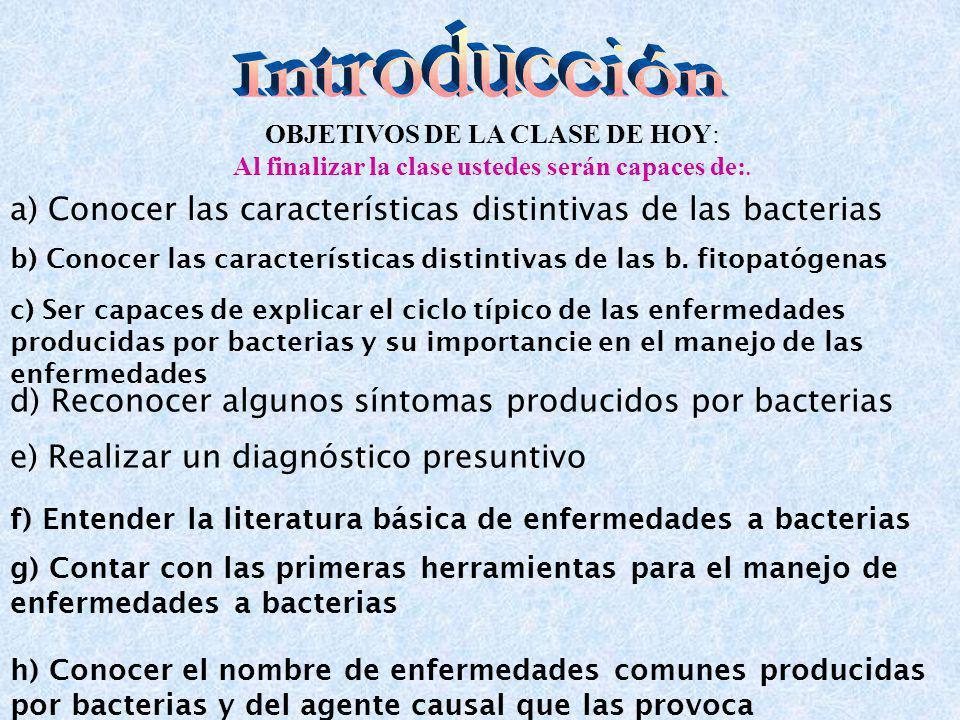 a) Conocer las características distintivas de las bacterias