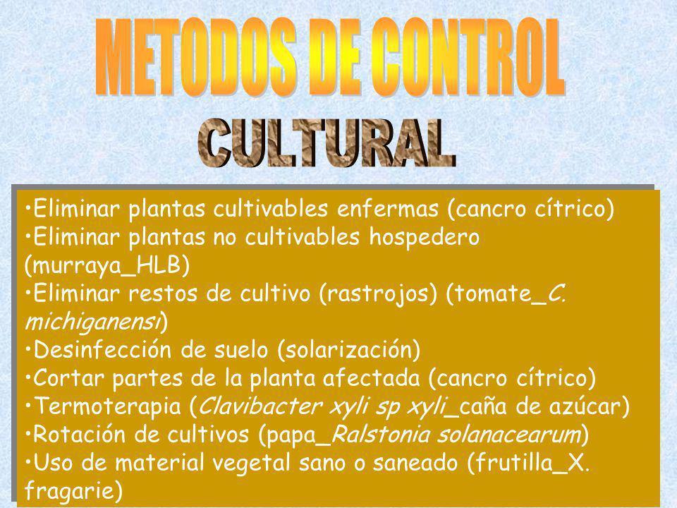 METODOS DE CONTROL CULTURAL