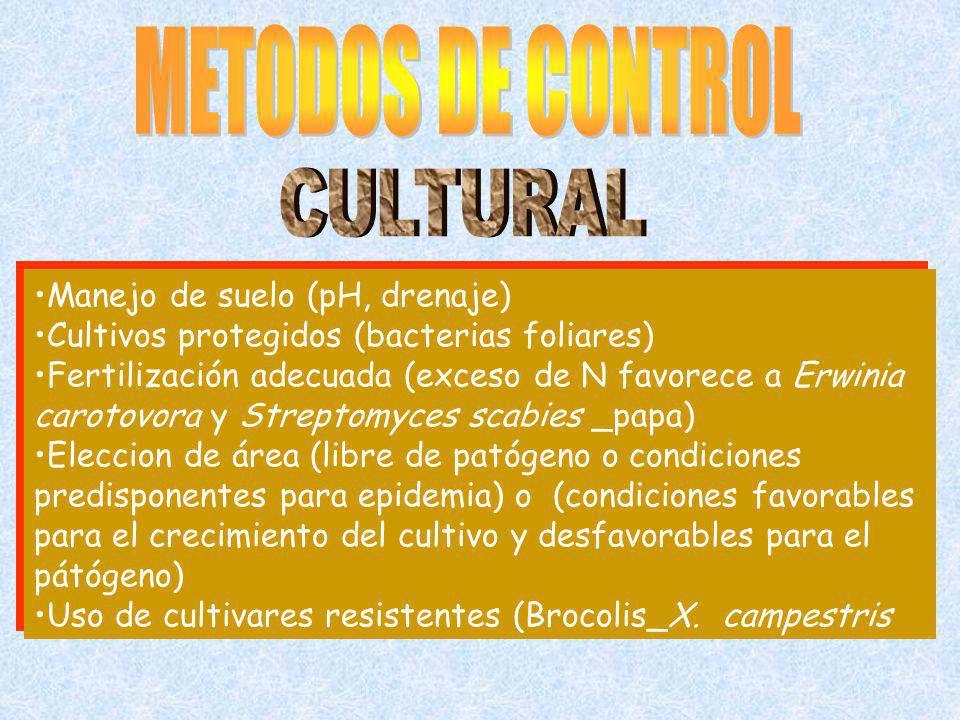 METODOS DE CONTROL CULTURAL Manejo de suelo (pH, drenaje)