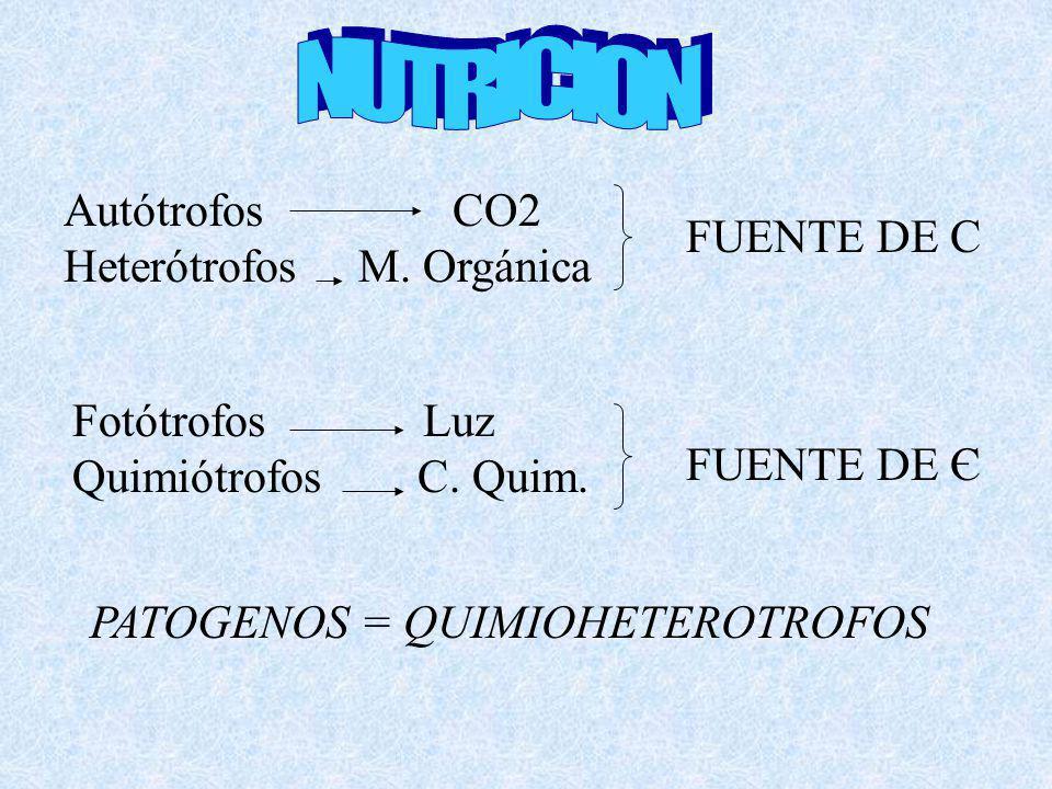 NUTRICION Autótrofos CO2 Heterótrofos M. Orgánica FUENTE DE C