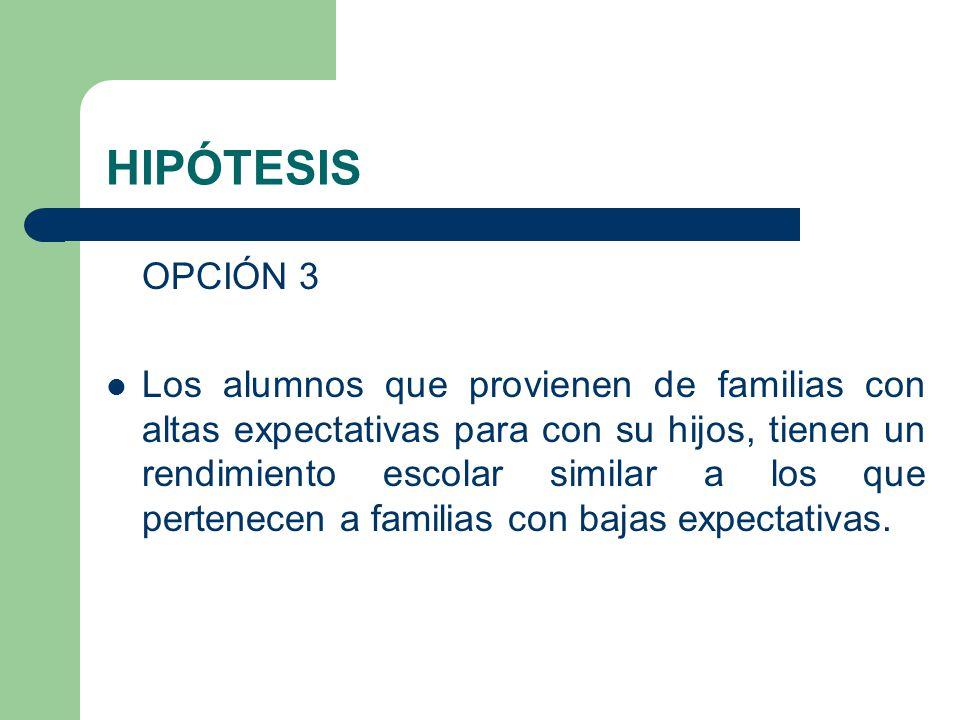 HIPÓTESIS OPCIÓN 3.