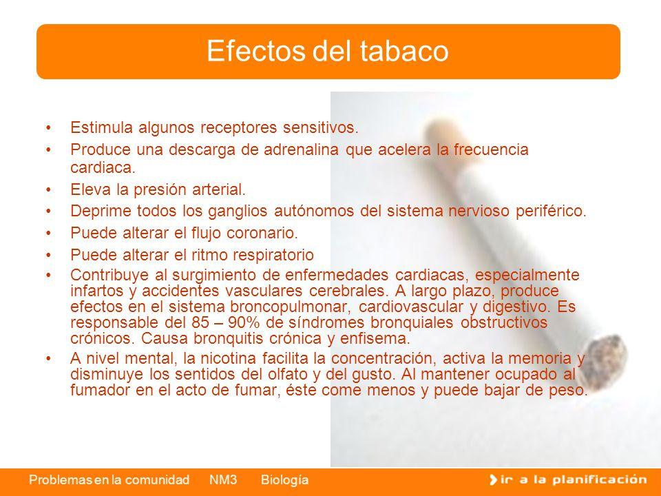 Efectos del tabaco Estimula algunos receptores sensitivos.