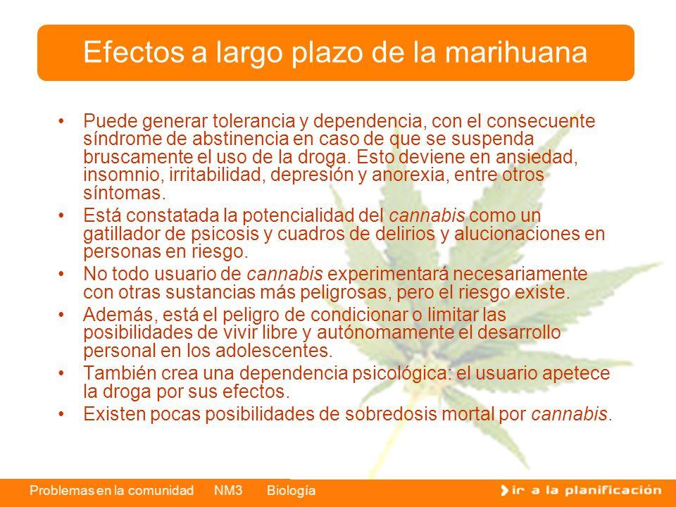 Efectos a largo plazo de la marihuana