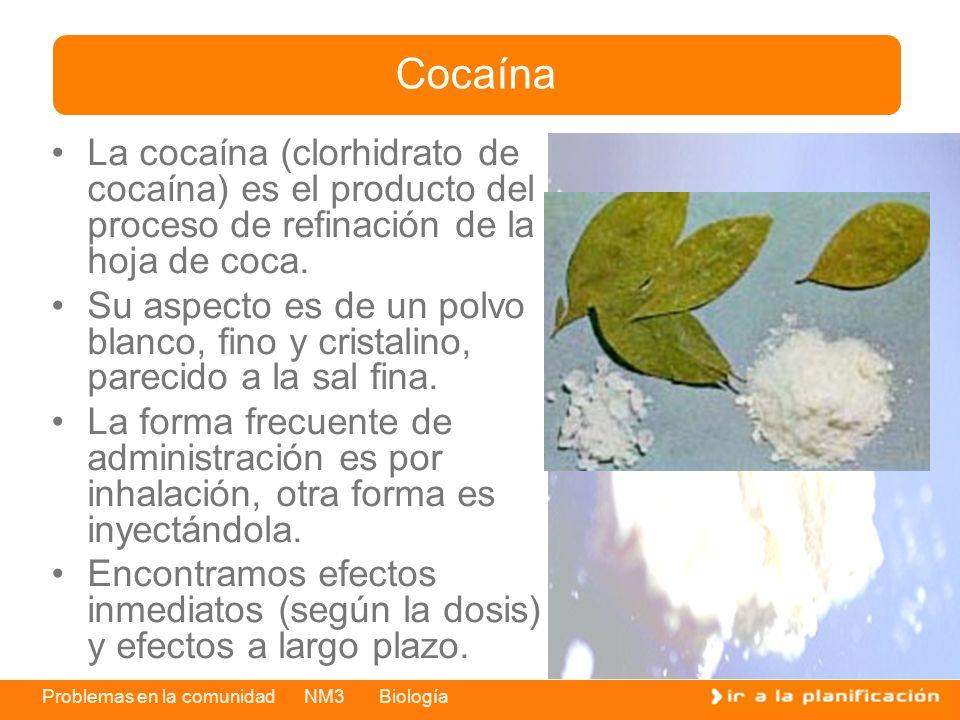 Cocaína La cocaína (clorhidrato de cocaína) es el producto del proceso de refinación de la hoja de coca.
