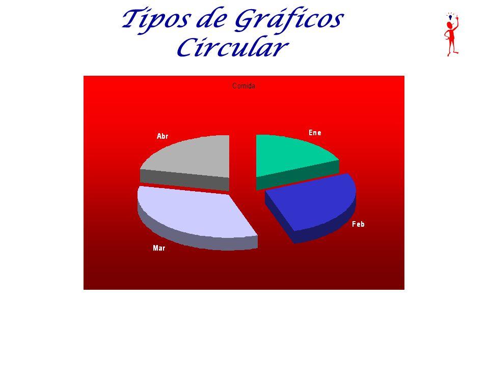 Tipos de Gráficos Circular