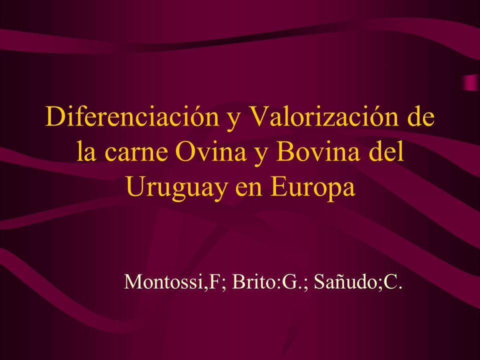Montossi,F; Brito:G.; Sañudo;C.