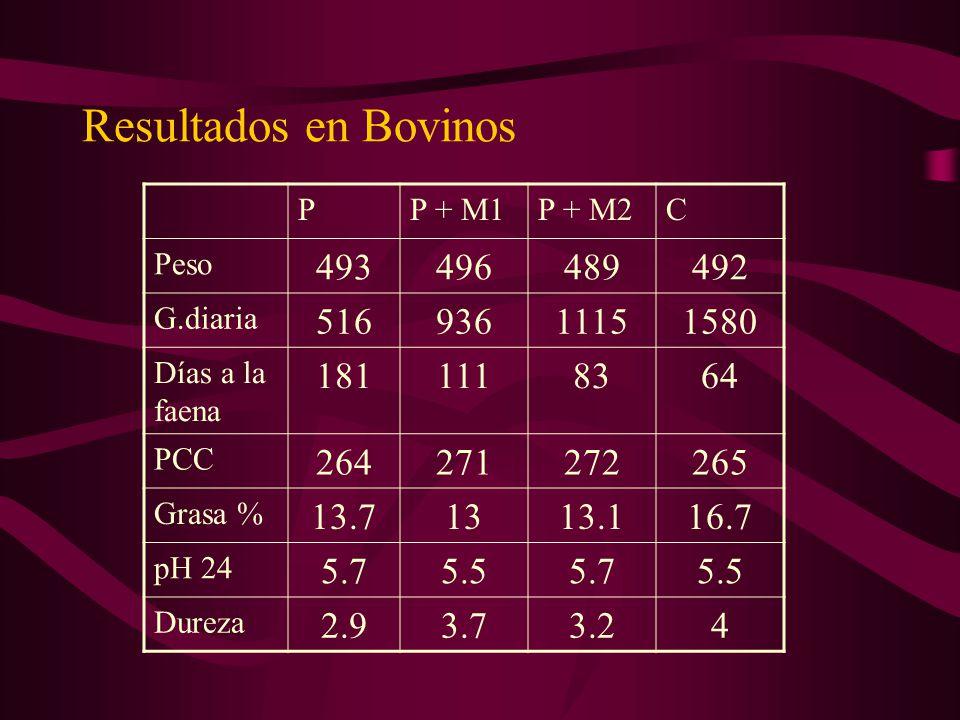 Resultados en Bovinos P. P + M1. P + M2. C. Peso. 493. 496. 489. 492. G.diaria. 516. 936.
