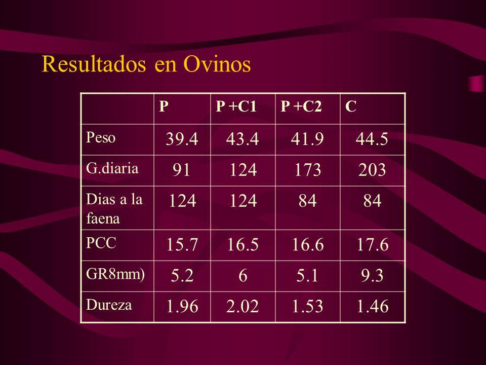 Resultados en Ovinos P. P +C1. P +C2. C. Peso. 39.4. 43.4. 41.9. 44.5. G.diaria. 91. 124.