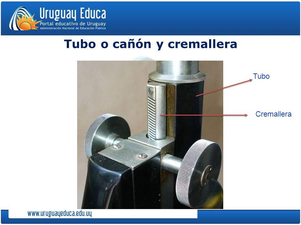 Tubo o cañón y cremallera