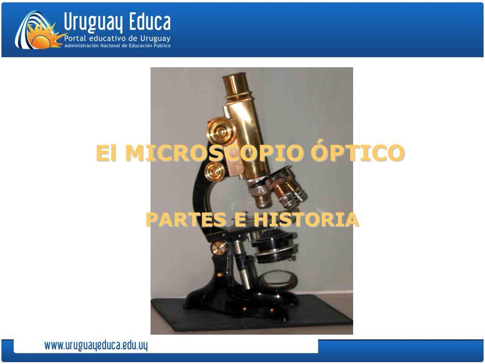 El MICROSCOPIO ÓPTICO PARTES E HISTORIA