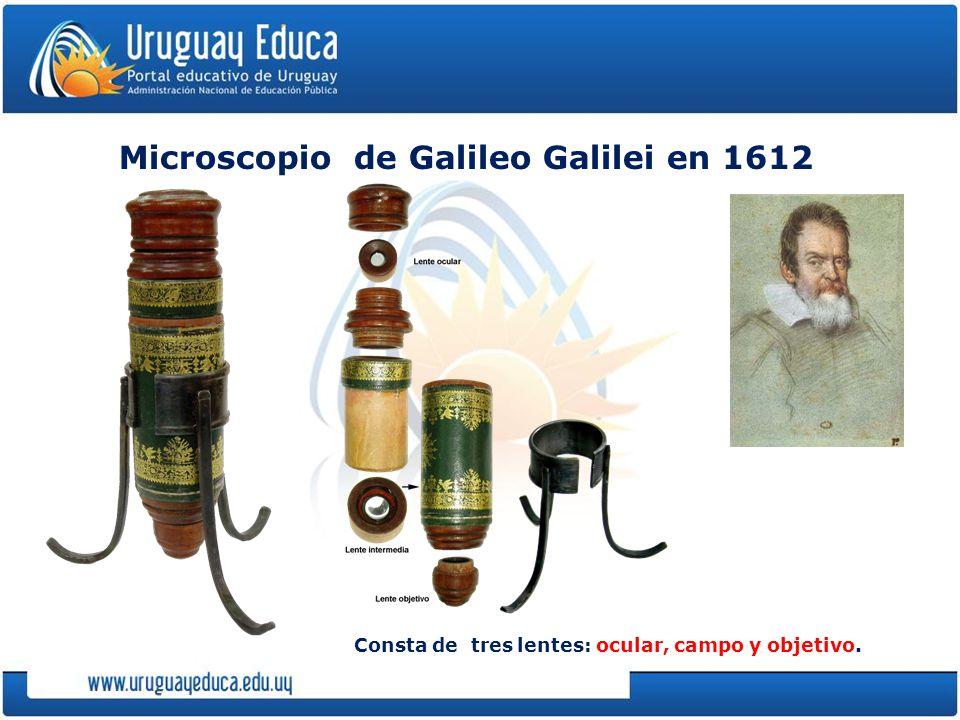Microscopio de Galileo Galilei en 1612