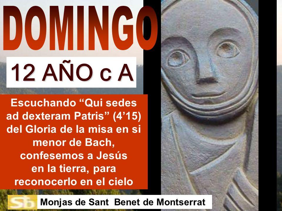 DOMINGO 12 AÑO c A.