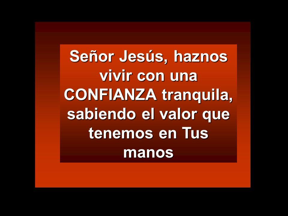 Señor Jesús, haznos vivir con una CONFIANZA tranquila, sabiendo el valor que tenemos en Tus manos
