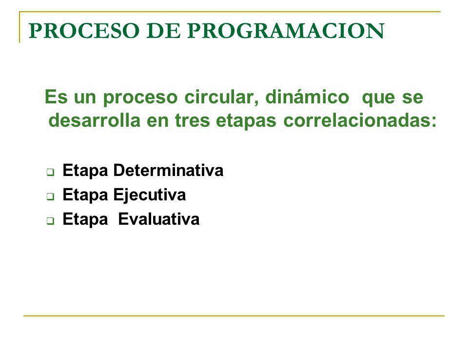 PROCESO DE PROGRAMACION