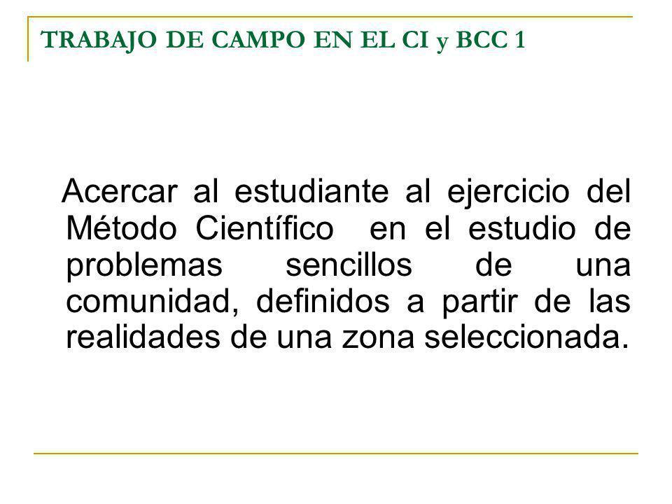 TRABAJO DE CAMPO EN EL CI y BCC 1