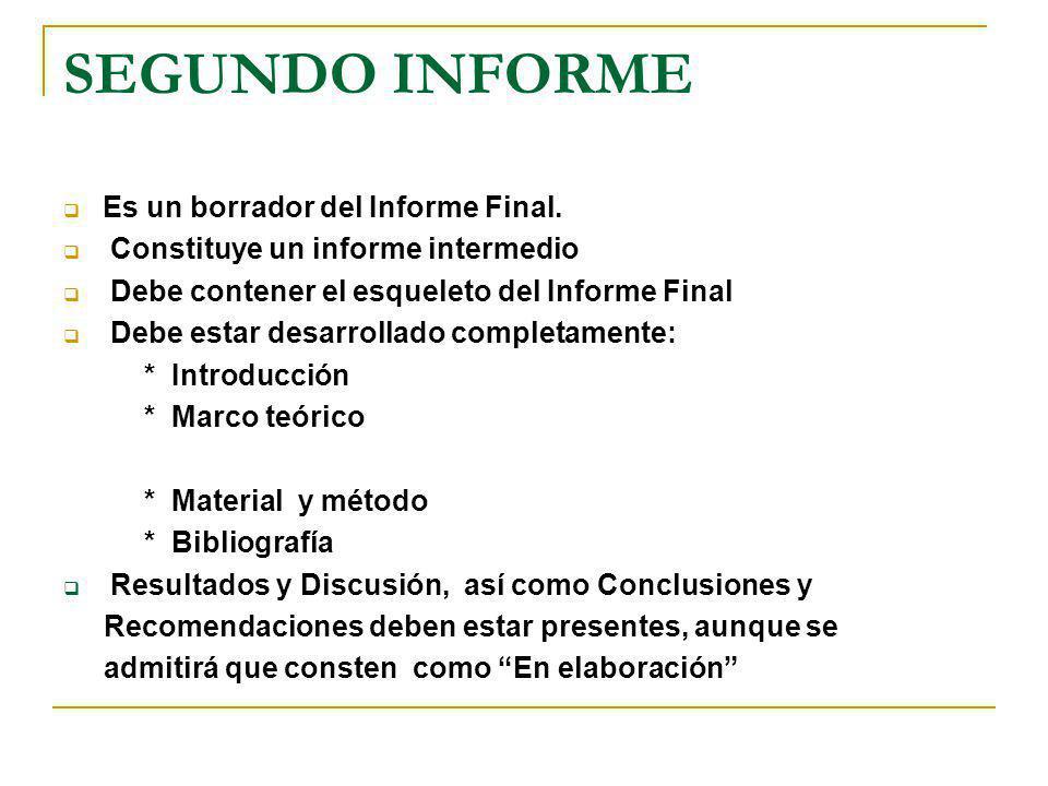 SEGUNDO INFORME Es un borrador del Informe Final.