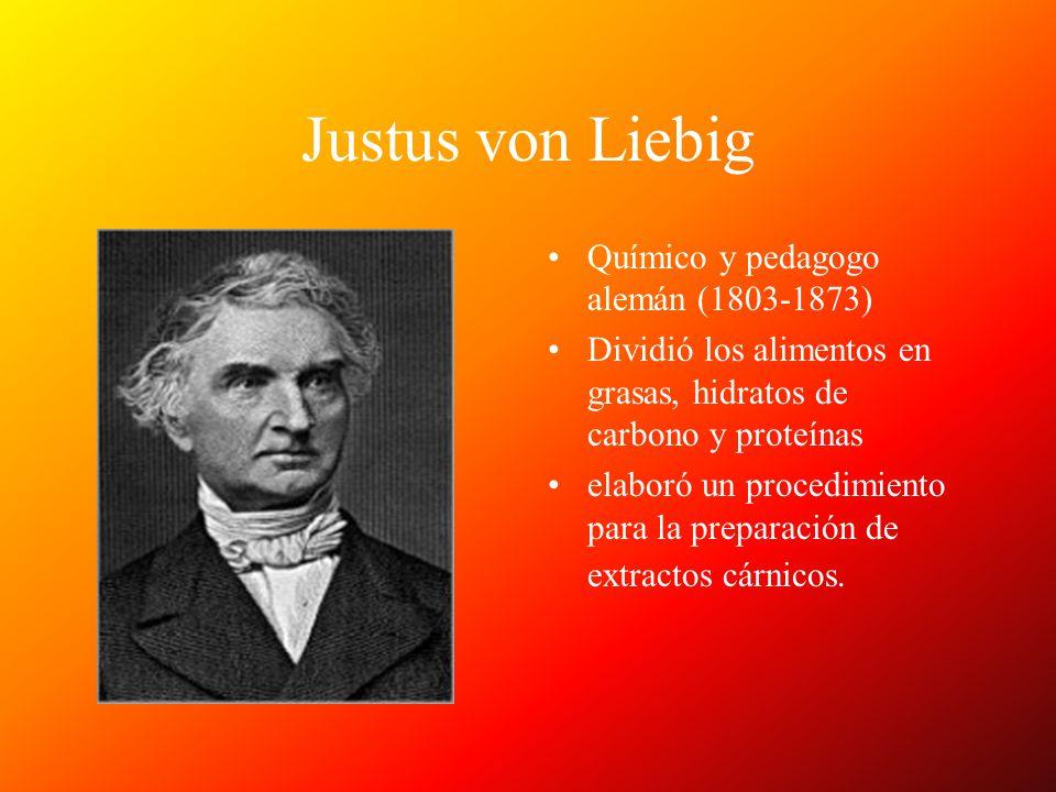 Justus von Liebig Químico y pedagogo alemán (1803-1873)