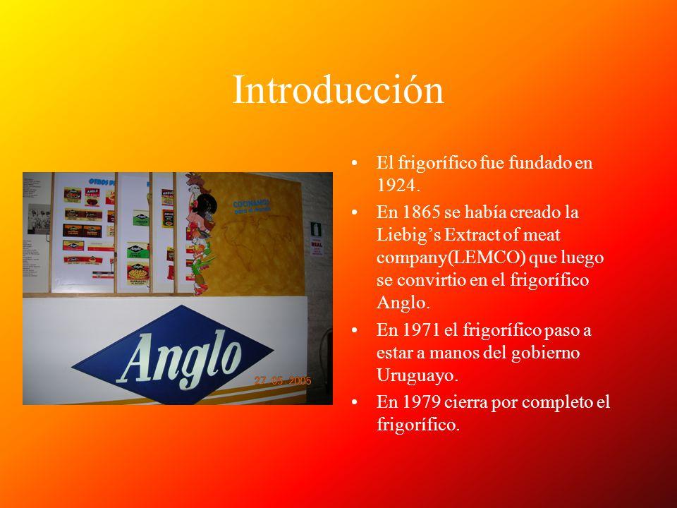 Introducción El frigorífico fue fundado en 1924.
