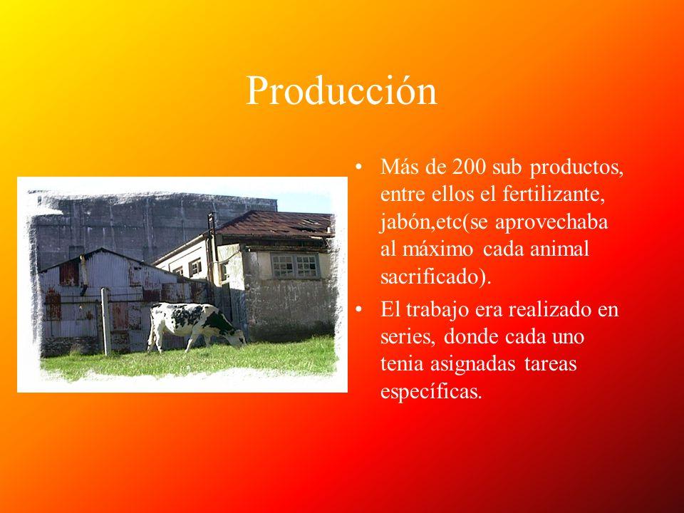 Producción Más de 200 sub productos, entre ellos el fertilizante, jabón,etc(se aprovechaba al máximo cada animal sacrificado).
