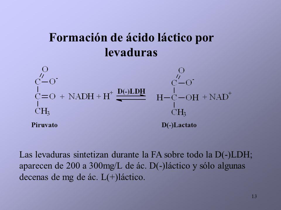 Formación de ácido láctico por levaduras