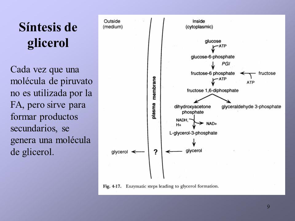 Síntesis de glicerol