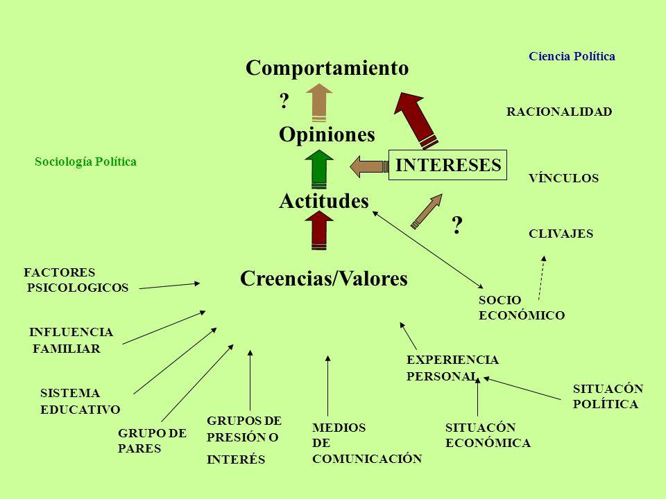 Comportamiento Opiniones Actitudes Creencias/Valores INTERESES