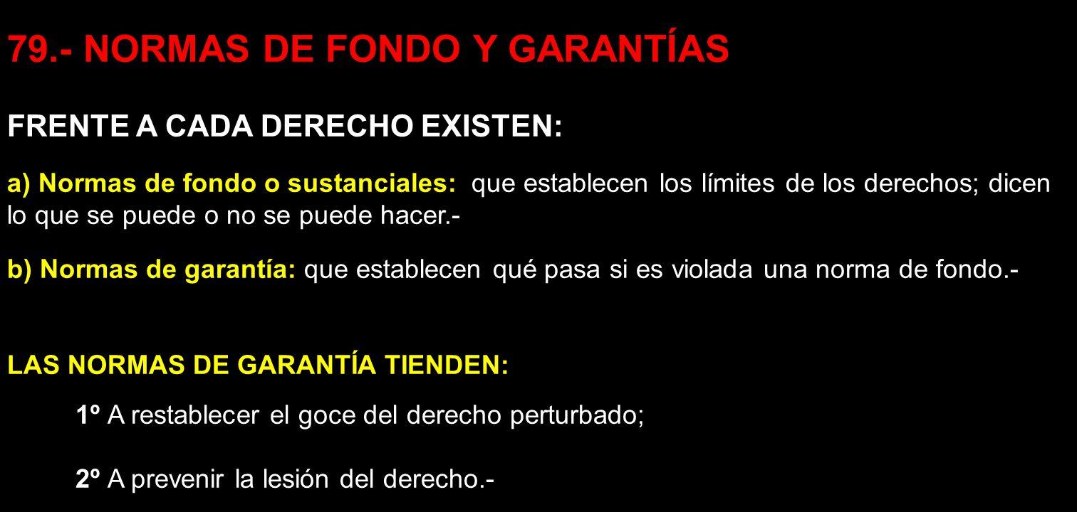 79.- NORMAS DE FONDO Y GARANTÍAS