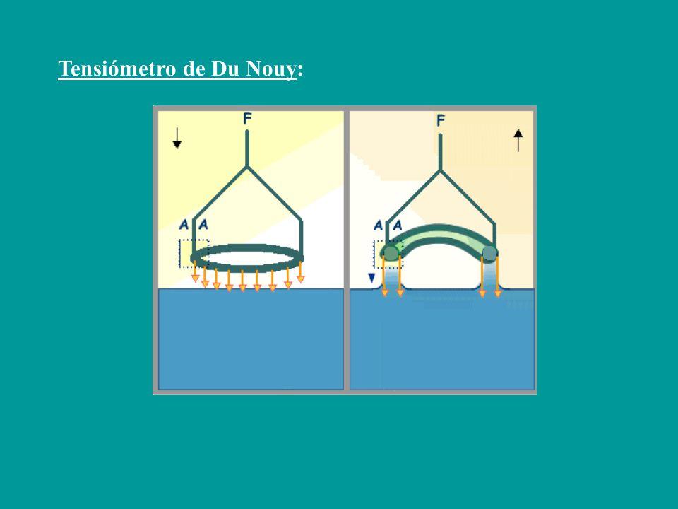 Tensiómetro de Du Nouy: