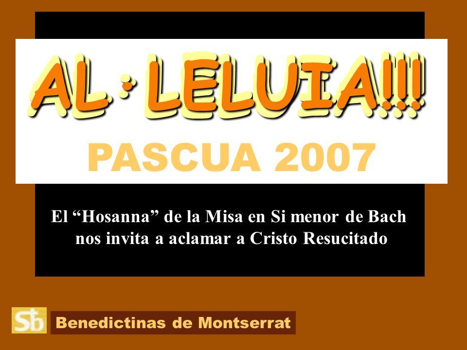 AL·LELUIA!!! AL·LELUIA!!! AL·LELUIA!!! AL·LELUIA!!!