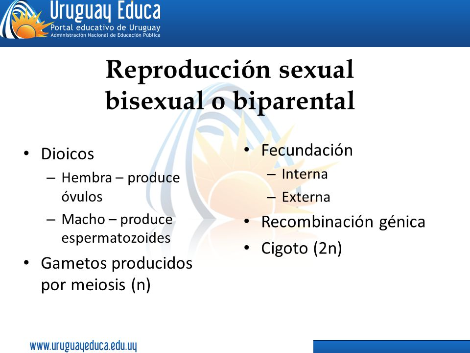 Reproducción sexual bisexual o biparental