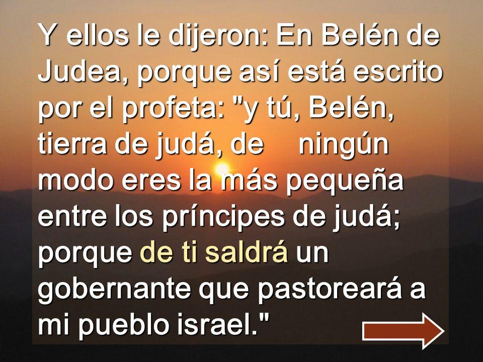 Y ellos le dijeron: En Belén de Judea, porque así está escrito por el profeta: y tú, Belén, tierra de judá, de ningún modo eres la más pequeña entre los príncipes de judá; porque de ti saldrá un gobernante que pastoreará a mi pueblo israel.