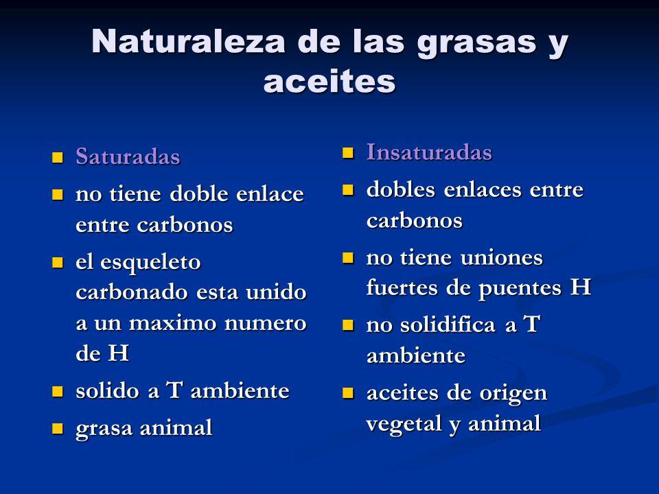 Naturaleza de las grasas y aceites