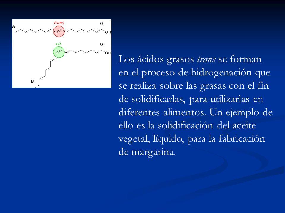 Los ácidos grasos trans se forman en el proceso de hidrogenación que se realiza sobre las grasas con el fin de solidificarlas, para utilizarlas en diferentes alimentos.