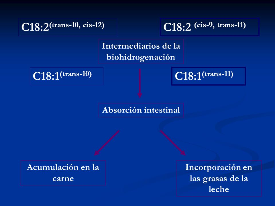 C18:2(trans-10, cis-12) C18:2 (cis-9, trans-11) C18:1(trans-10)