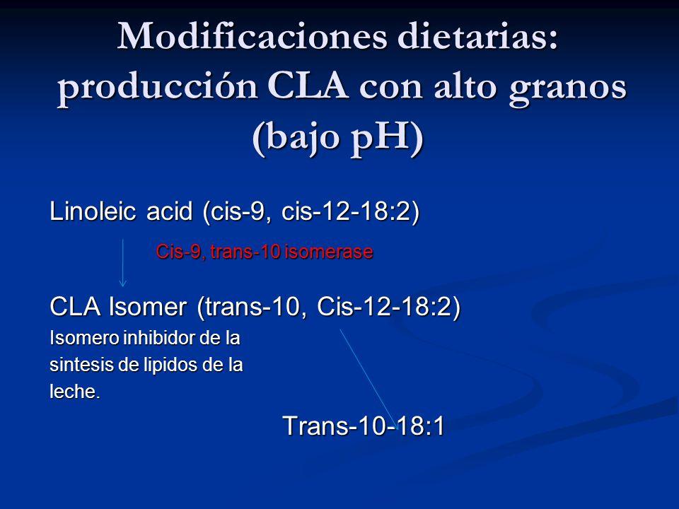 Modificaciones dietarias: producción CLA con alto granos (bajo pH)