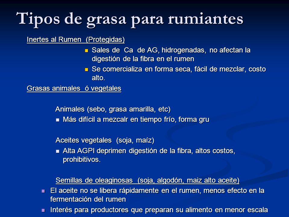 Tipos de grasa para rumiantes