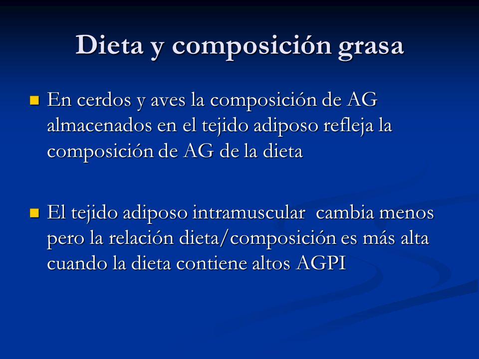 Dieta y composición grasa