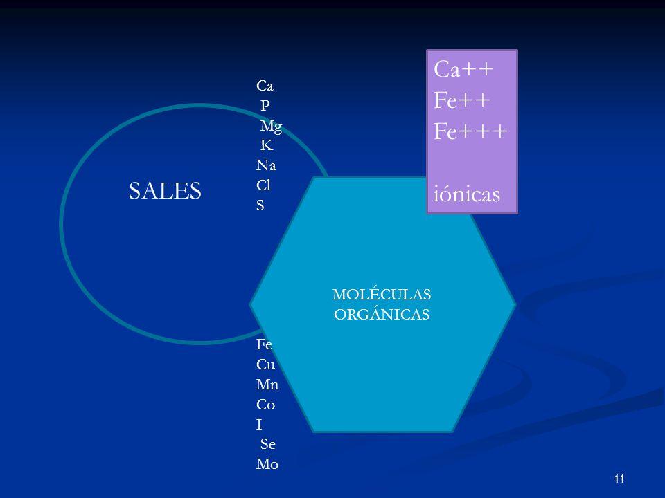 Ca++ Fe++ Fe+++ iónicas SALES Ca P Mg K Na Cl S Fe Cu Mn