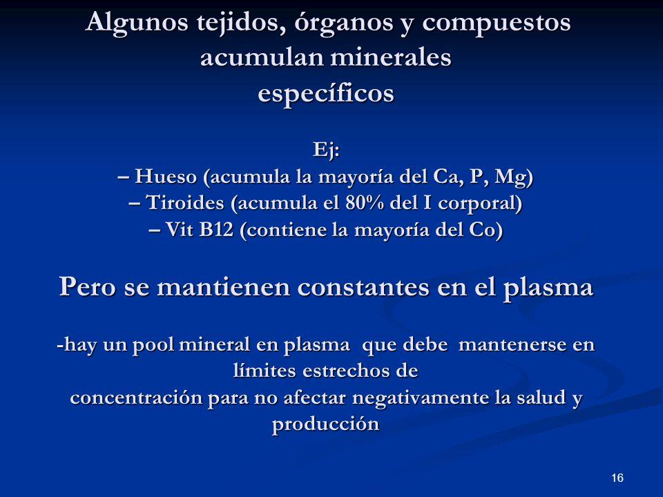 Algunos tejidos, órganos y compuestos acumulan minerales específicos Ej: – Hueso (acumula la mayoría del Ca, P, Mg) – Tiroides (acumula el 80% del I corporal) – Vit B12 (contiene la mayoría del Co) Pero se mantienen constantes en el plasma -hay un pool mineral en plasma que debe mantenerse en límites estrechos de concentración para no afectar negativamente la salud y producción