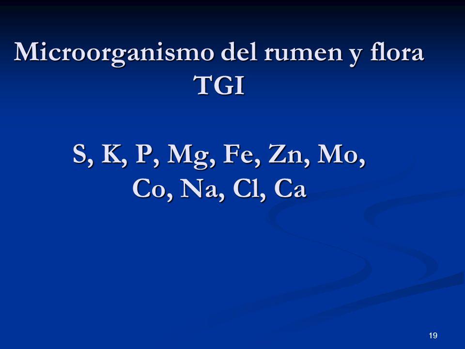 Microorganismo del rumen y flora TGI S, K, P, Mg, Fe, Zn, Mo, Co, Na, Cl, Ca