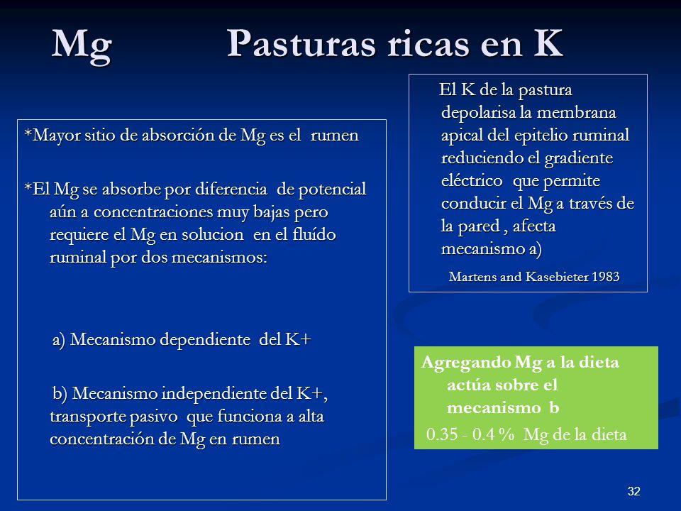 Mg Pasturas ricas en K