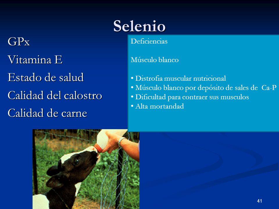 Selenio GPx Vitamina E Estado de salud Calidad del calostro