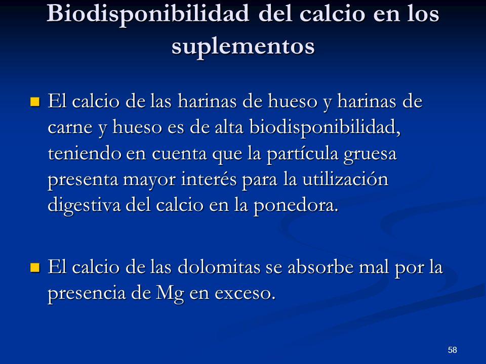 Biodisponibilidad del calcio en los suplementos