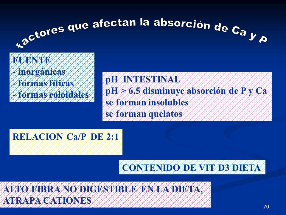 factores que afectan la absorción de Ca y P