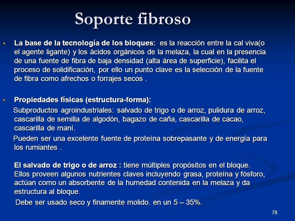 Soporte fibroso