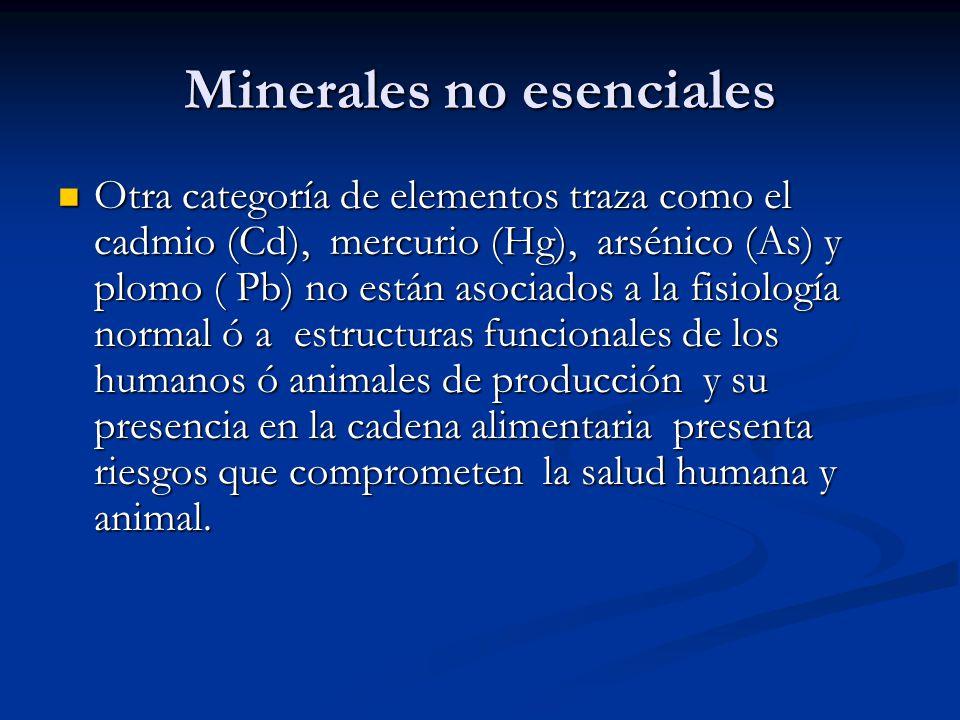 Minerales no esenciales