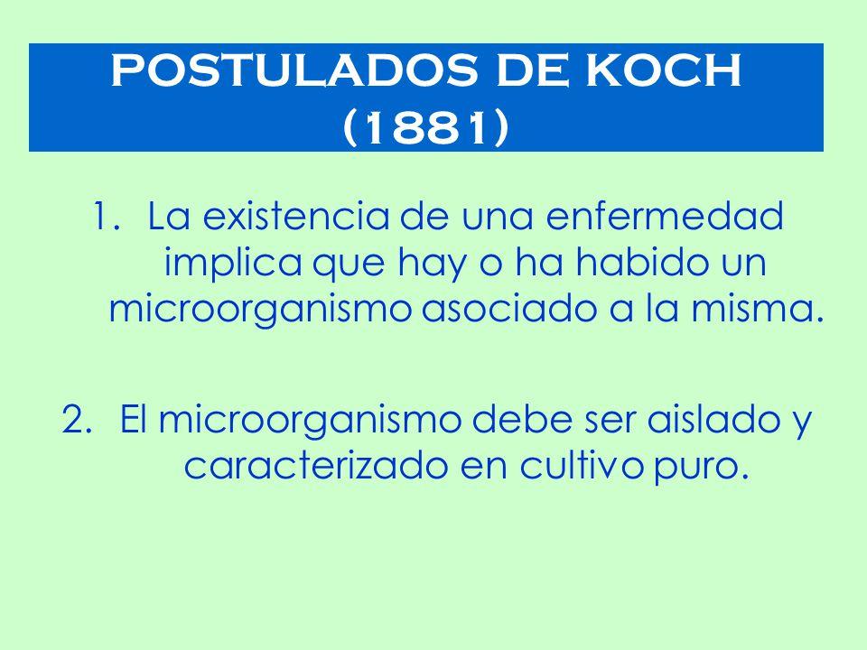El microorganismo debe ser aislado y caracterizado en cultivo puro.