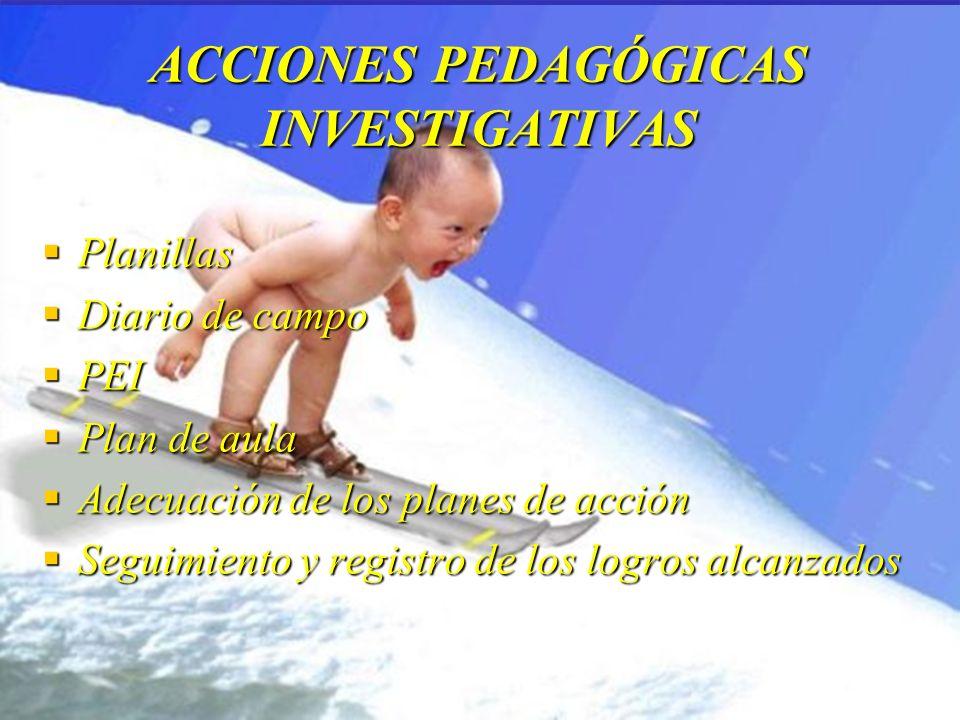 ACCIONES PEDAGÓGICAS INVESTIGATIVAS
