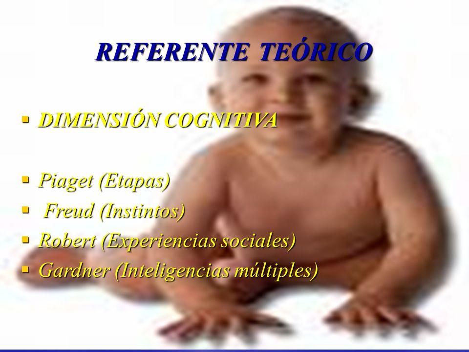 REFERENTE TEÓRICO DIMENSIÓN COGNITIVA Piaget (Etapas)