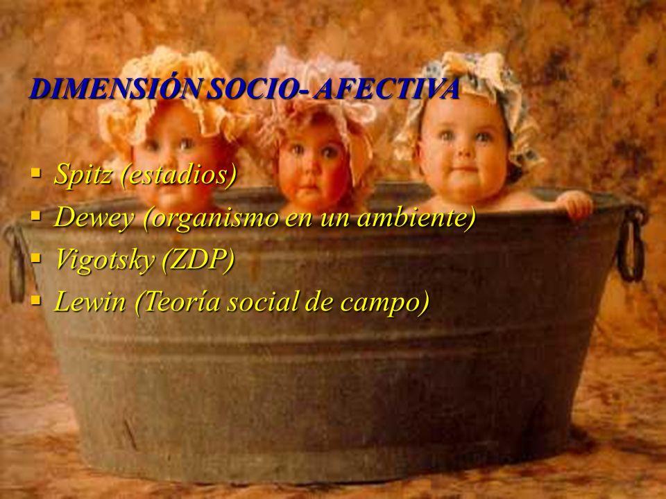 DIMENSIÓN SOCIO- AFECTIVA